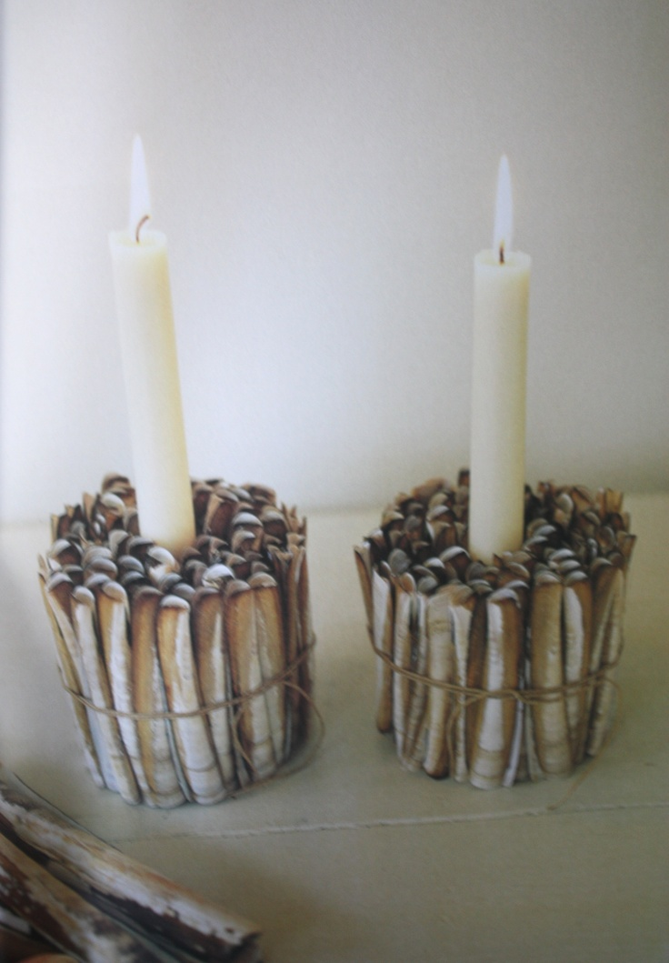 Razor Shell Candle Holders