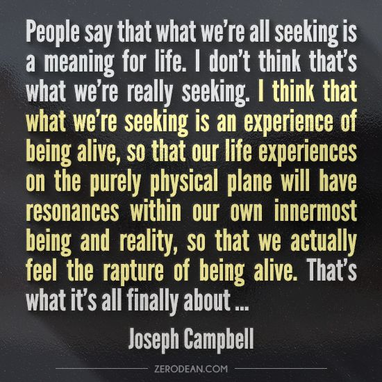 "What Is The Meaning Of Life Quotes: ""People Say That What We're All Seeking Is A Meaning For"
