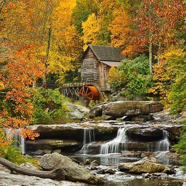 McConnells Mill State Park, Pennsylvania..need to take the kids, I went here all the time