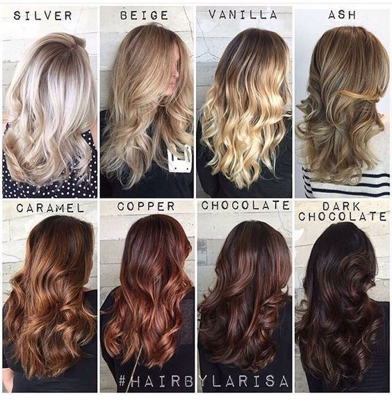 Blonde to brunette shades: