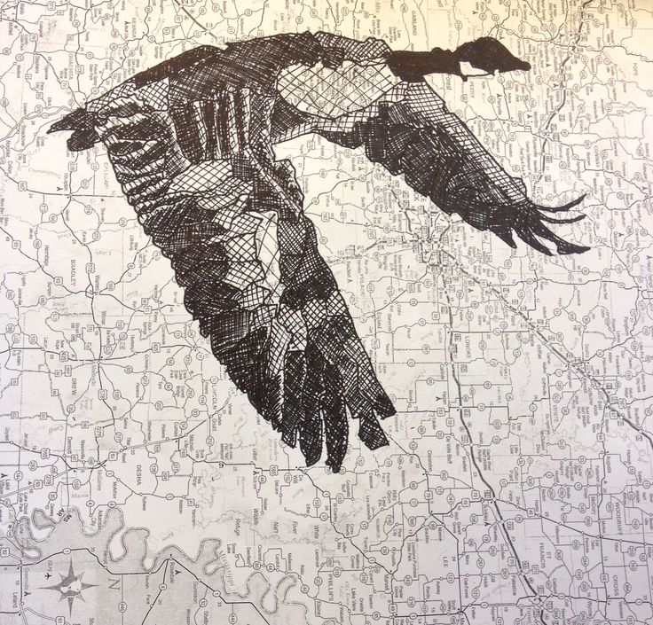 Pen and Ink drawing on a map by Alex Son.