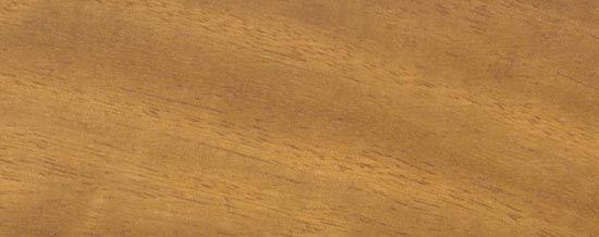 Wood Species for Hardwood Floor Medallions, Wood Floor Medallions, Inlays, Wood Borders and Block parquet - IROKO