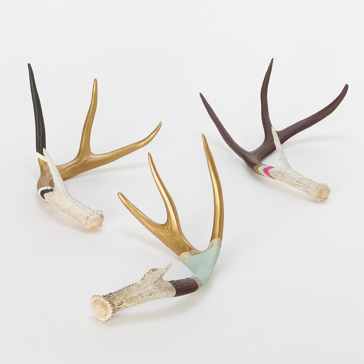 Hand Painted Antler....I got a pair in the shed....still attached to the skull...chances I will be able to paint them....slim, but possible.