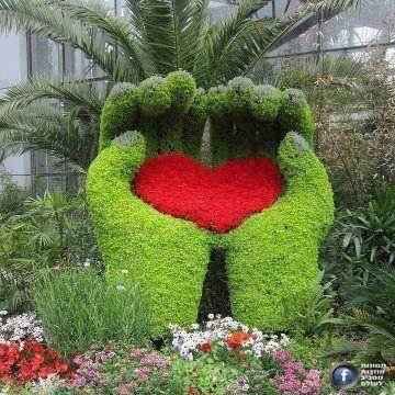 deixa seu coração nas mãos de JEUS ele cuida de você