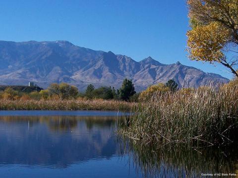 Roper lake state park safford arizona camping tent for Fishing spots in arizona