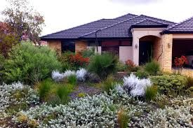 Image result for AUSTRALIAN NATIVE GARDEN