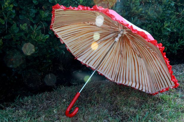 To make your own Amanita muscaria mushroom umbrella, visit the eHow craft blog for my tutorial on how to make your own!