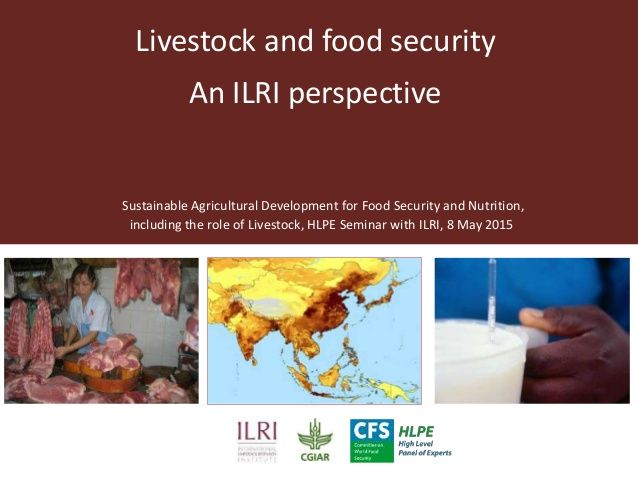 Livestock and food security: An ILRI perspective