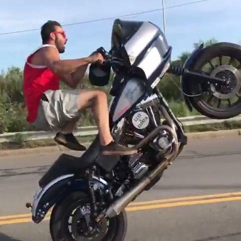 Harley Davidson + Stunt man Sal Fusco reveals off wonderful expertise popping wheelies