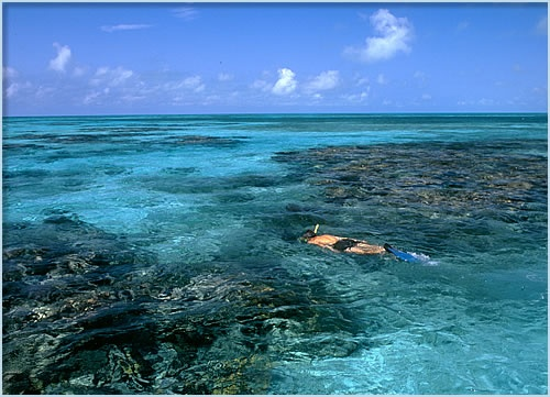 Belize Google Image Result for http://www.islandexpeditions.com/images/small-photos/08-snorkel-swim.jpg