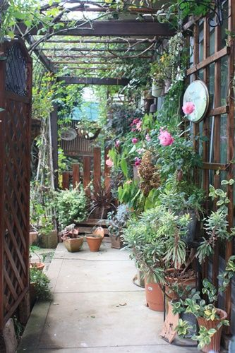時間的余裕が 少し増える来春こそは和のバラ庭や シェードガーデン部分を、レベルアップした~い! そこで まずは和のバラ庭の入口を それらしい雰囲気に改善する事に デ 金属の洋風のトレリスを撤去してDIYで 木製のトレリスつくり(^^♪ 今回は 和の庭なので奇をてらわずに...