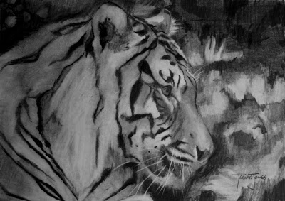 (SOLD) #36 Tiger: You can hear a tiger roar over a mile away!