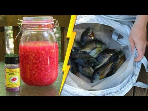 Pro Cure Kokanee Killer Korn Dye And Sweet Corn Make A