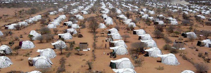 Dadaab Refugee Camp – NetHope