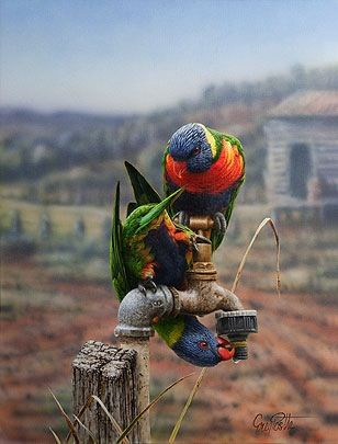 Amazing Art work by Greg Postle. My favourite bird in the world, the Rainbow Lorikeet.