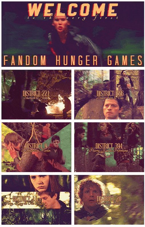 THIS version of the Hunger Games. Plllleeeeeease?