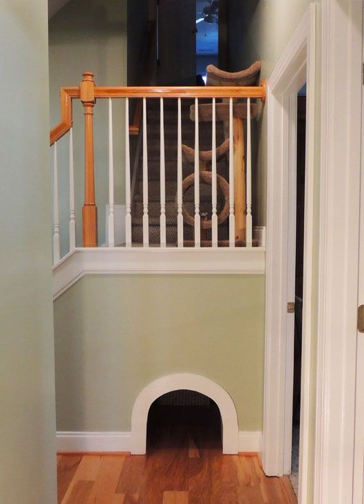 Pet Friendly home ideas on Pinterest
