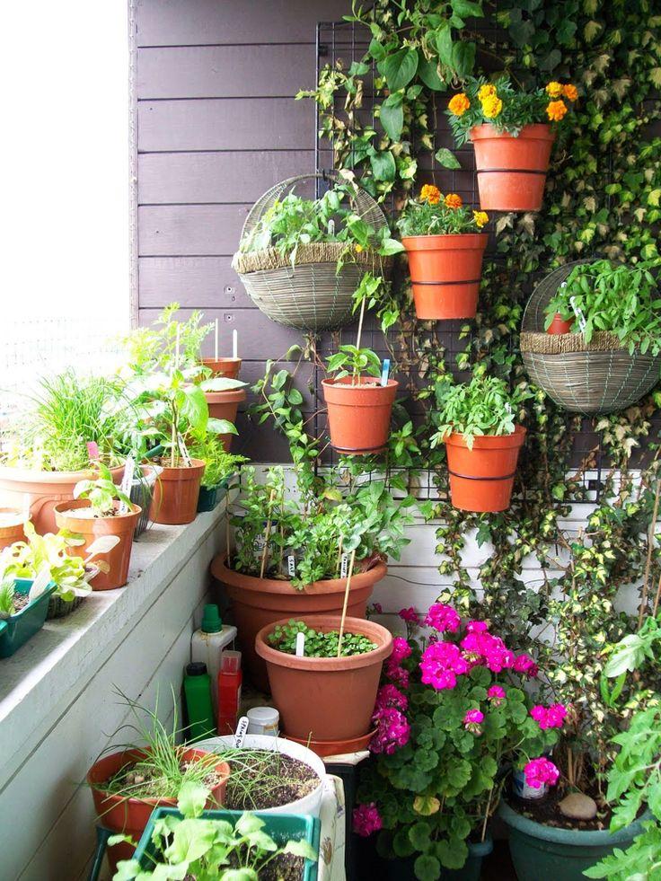 Jardin vertical au balcon am nager sa petite oasis de verdure jardinage balcon amenager - Jardin au balcon ...