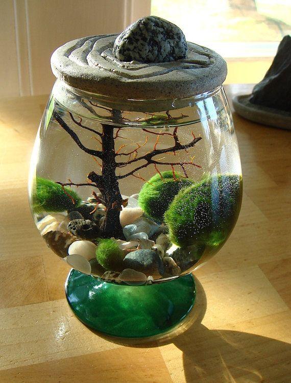 Zen Garden Stone Top Marimo Ball Unique Terrarium by MyZen on Etsy,