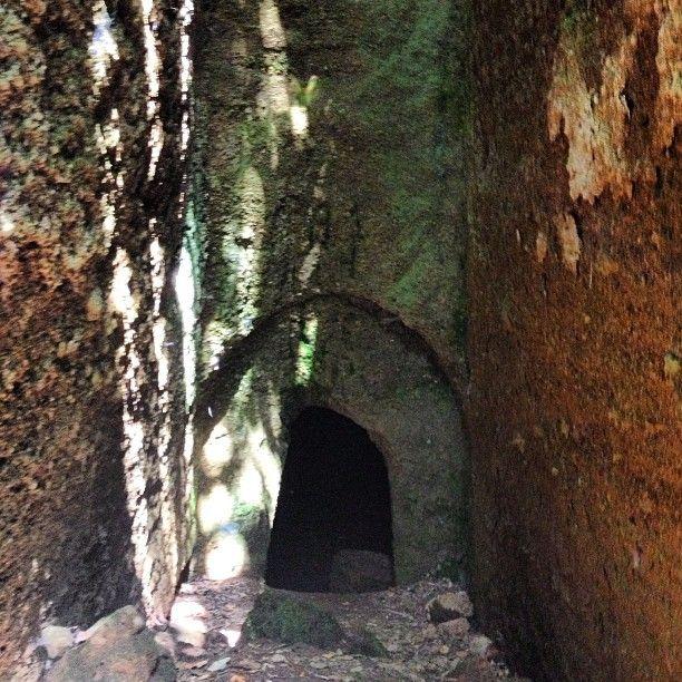 Tomba Pisa III - II sec. a.C.