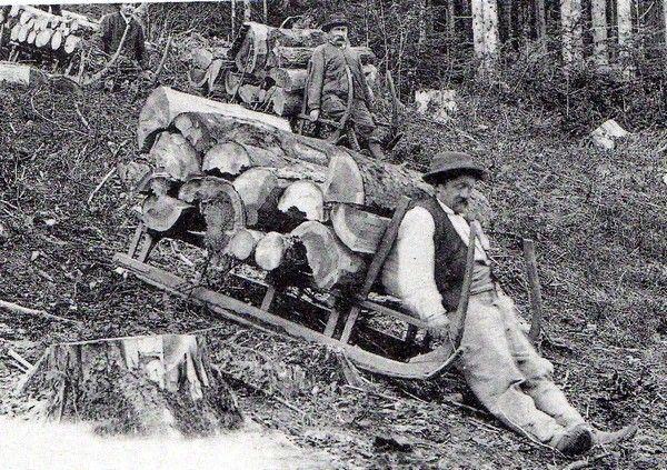 vieux métiers forestiers : le débardeur-roulier