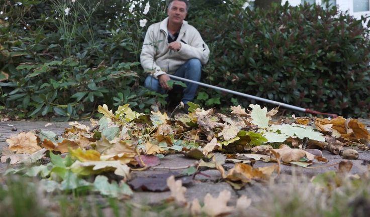 Afgevallen blad in je tuin, wat doe je ermee?