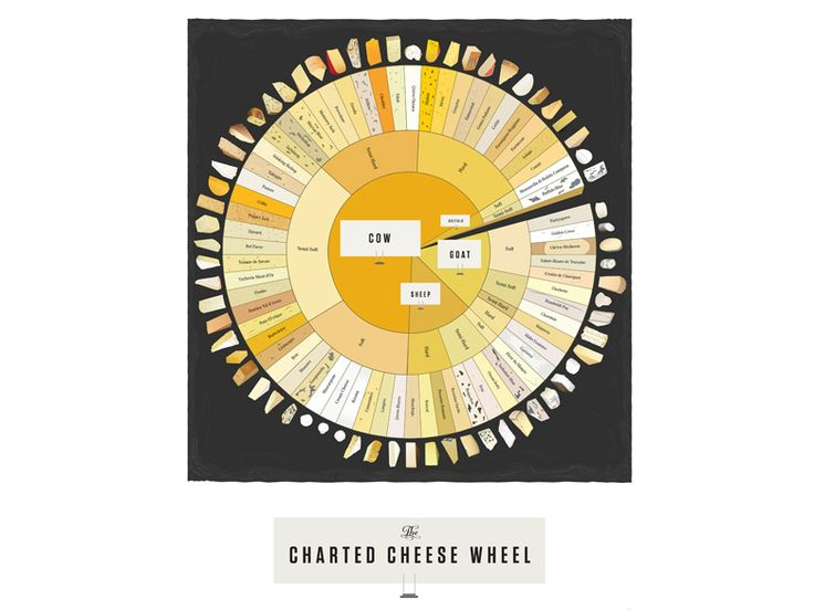 THE CHARTED CHEESE WHEEL  Curd is the word in my home, where at any given time there's not a drawer but a shelf devoted to the world's most perfect food. This neat-o poster breaks down the love of my life into 65 varieties, from Brie to Stinking Bishop