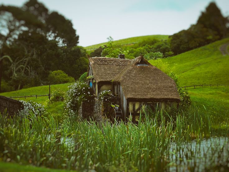 An Unexpected Party (2013).  When reading The Hobbit as a child, I was whisked away to a land of fantasy, but in my mind it was real.  Matamata, New Zealand. Words & Image: © Gary Light (2013). Creative Commons: (CC BY-NC-ND4.0).  #photography #art #nature #landscape #travel #newzealand