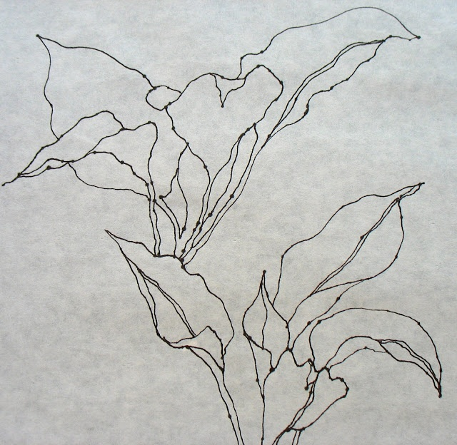 Contour Line Drawing Of A Flower : Best contour line drawing images on pinterest