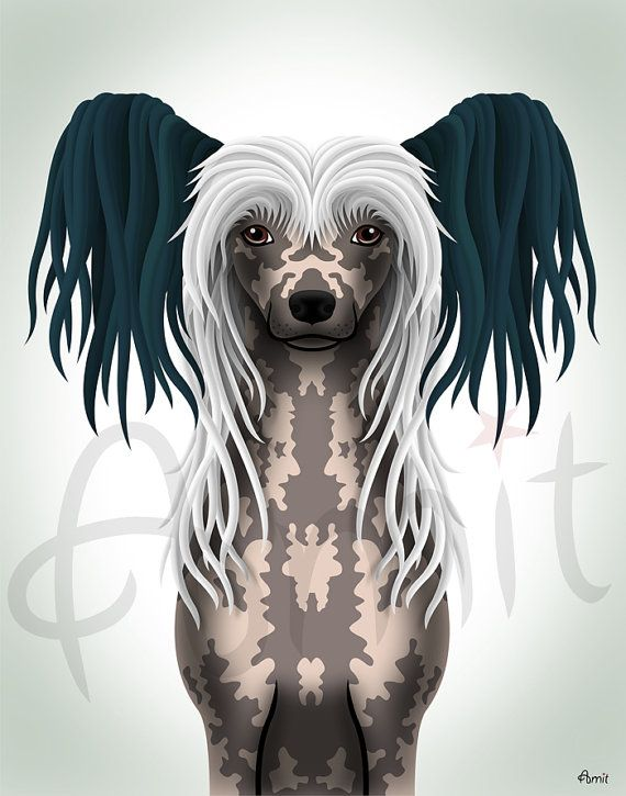Chinese Crested by SiberianArt on Etsy, $35.00