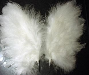 Feather Wings tutorial