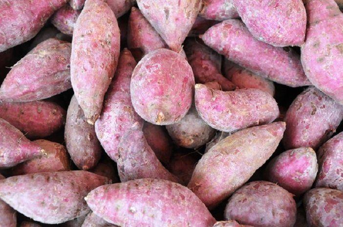 Zuurkoolstamppot met zoete aardappel - Mind Your Feed