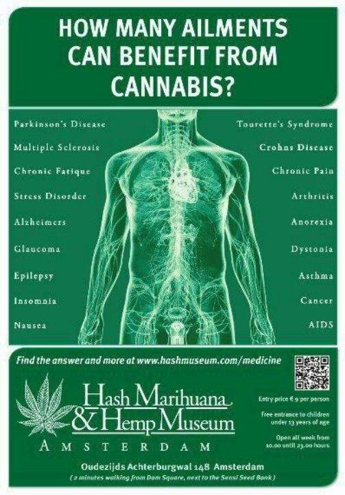 and so much more...  ( marijuana cannabis )