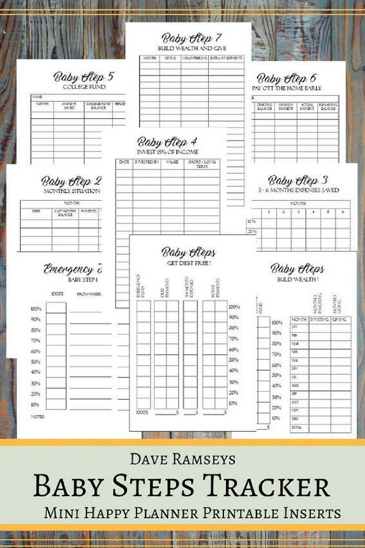 baby steps tracker printable planner pages for the mini