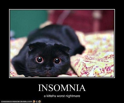 Funny Insomnia Memes