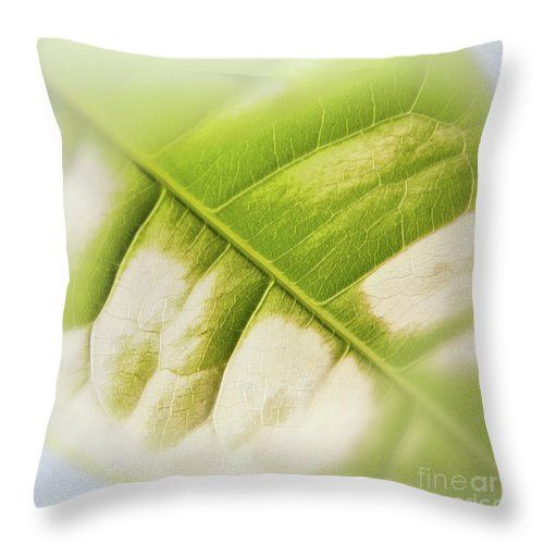 Partly Faded Leaf Soft Throw Pillow by Sverre Andreas Fekjan.  Our throw pillows are made from 100% spun polyester poplin fabric and…