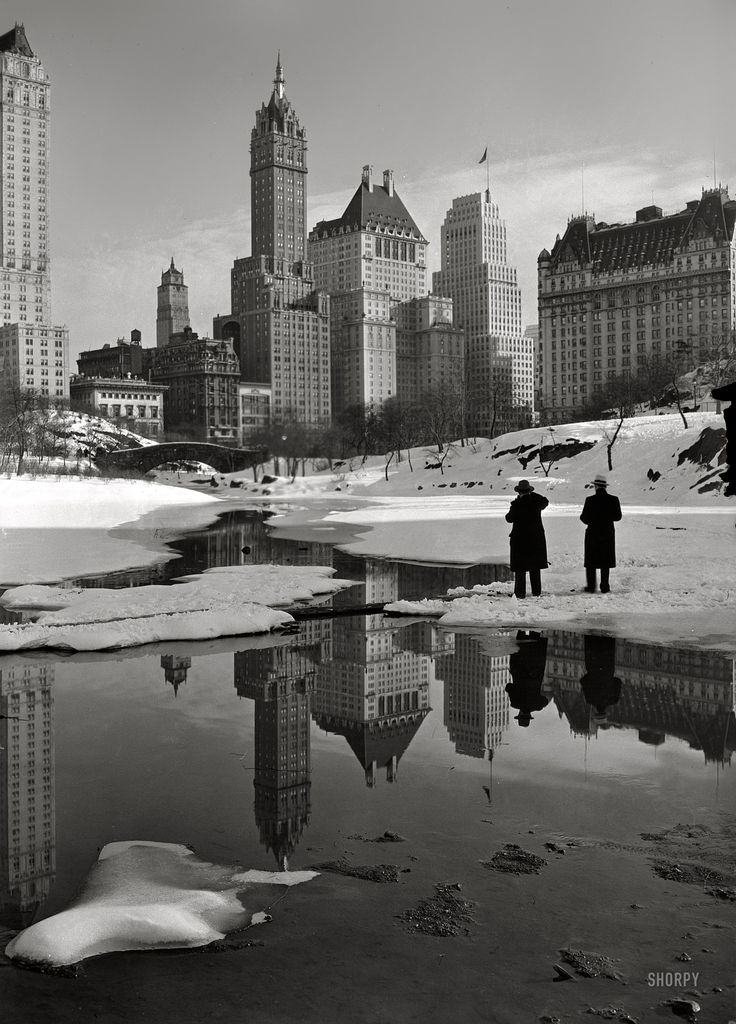 February 12, 1933. New York City views. Plaza buildings from Central Park. The Savoy Plaza and Plaza hotels. Photo by Samuel H. Gottscho.