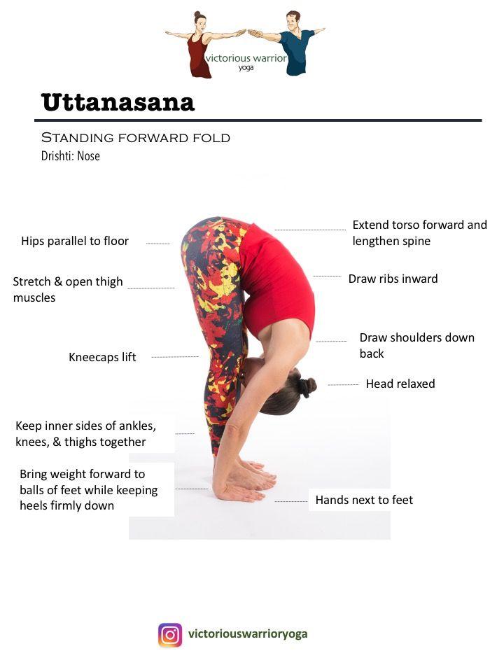 Surya Namaskara B | Victorious Warrior Yoga & Fitness
