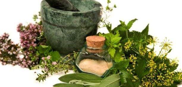 Συνταγές: Βότανα για το δέρμα