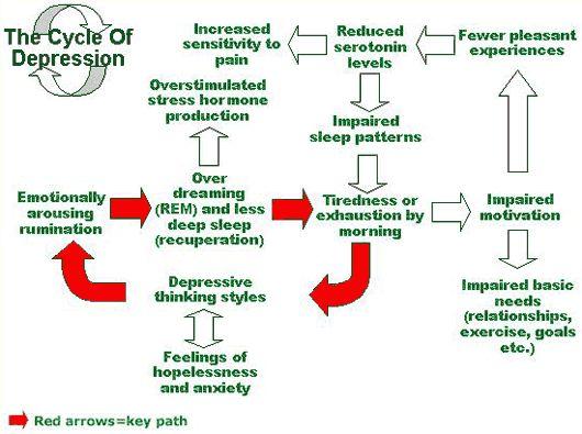 images about Depression Bi Polar Disorder on Pinterest
