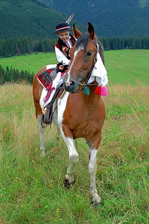 Goral na koniu - young 'Highlander' on a horse