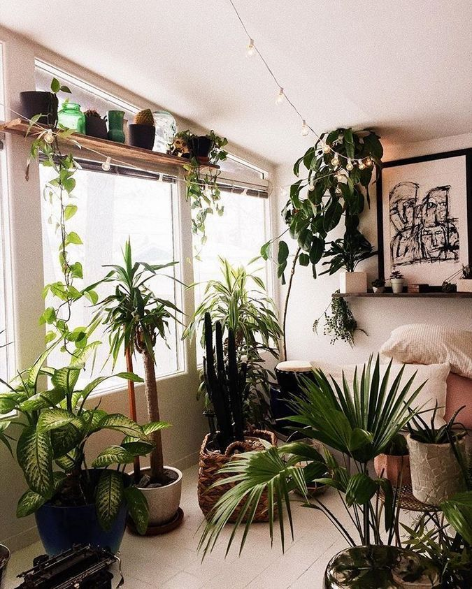 Coolest Diy Planter Ideas For Make Your Happy Healthy 31 Inspira Spaces Living Room Plants Bedroom Plants Plant Decor