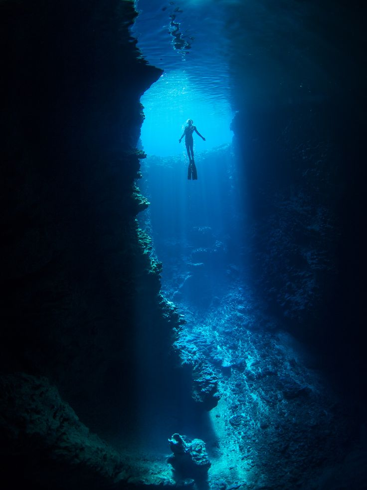 Best Destinations For Freediving: 17 Best Images About DIVE IN On Pinterest