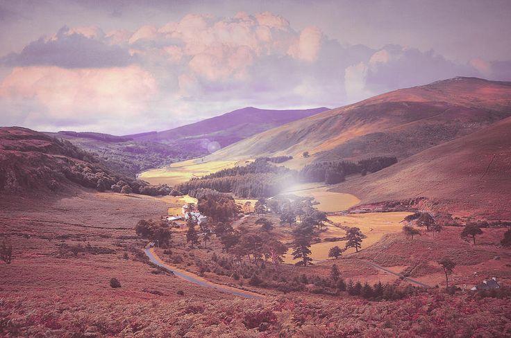 Fairyland. Wicklow Hills. Ireland by Jenny Rainbow