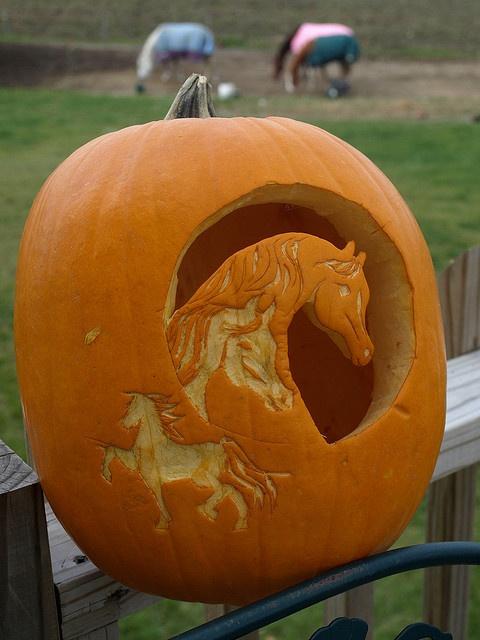 My Pumpkin by Brittany Hunter, via Flickr