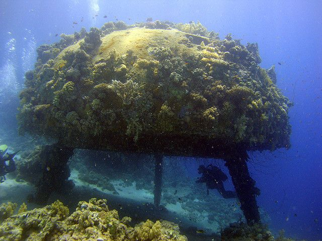 38 best images about Underwater on Pinterest   Statue of ...