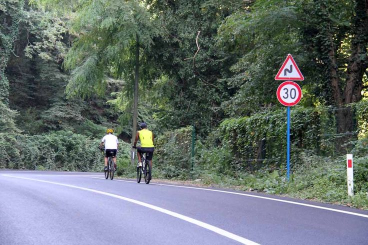Cyclists at Belgrade Forest in Istanbul