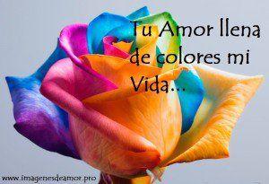 pin images of llena tu vida de amor | tarjeta de rosa de colores con poema corto