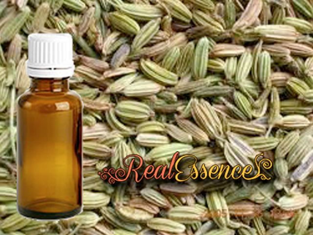 Fennel Essential oil 100% Pure and natural essential oil 10ml in an amber bottle