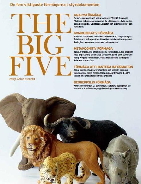 Förmågorna - The Big Five (från Matematikutveckling i Skara).